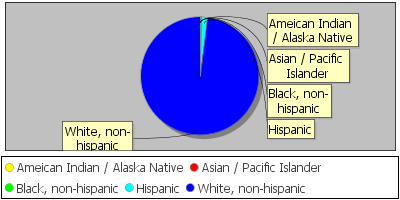 Student Demographic Distribution